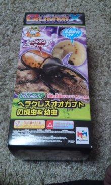 キャベ男ブログ-グミックス1